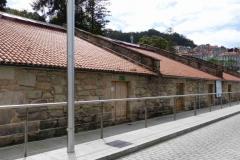 Camino-2013-015